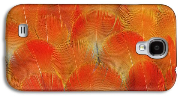 Breast Feathers Of The Camelot Macaw Galaxy S4 Case by Darrell Gulin