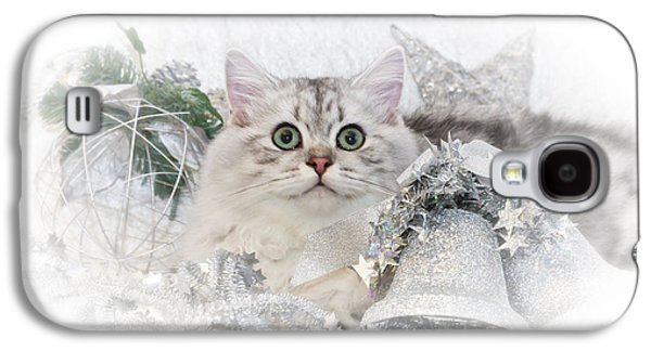 British Longhair Cat Christmas Time II Galaxy S4 Case by Melanie Viola