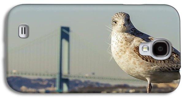 Brooklyn Seagull Galaxy S4 Case by Jon Woodhams