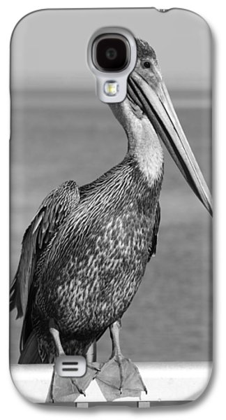 Brown Pelican Galaxy S4 Case