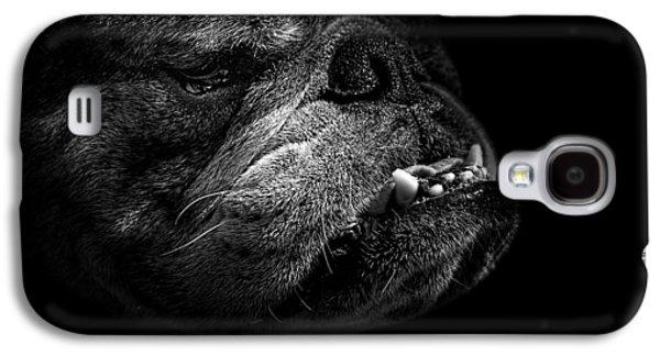 Bull Dog Galaxy S4 Case by Bob Orsillo