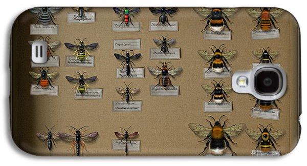 Bumblebees - Wild Bees - Wesps - Yellow Jackets - Ichneumon Flies - Apiformes Vespulas Hymenopteras  Galaxy S4 Case by Urft Valley Art