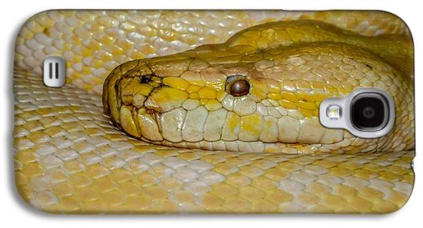 Burmese Python Galaxy S4 Case by Ernie Echols