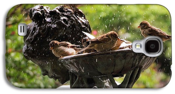 Burnett Bird Bath Galaxy S4 Case by Jessica Jenney