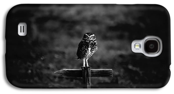 Burrowing Owl At Dusk Galaxy S4 Case by Kelly Gibson