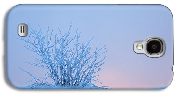 Bush In Snow In Morning Vosges France Galaxy S4 Case by Heike Odermatt
