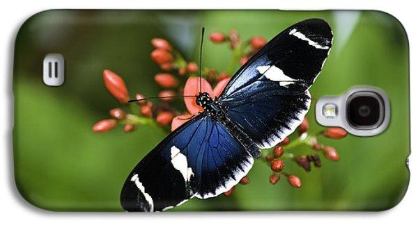 Butterfly 0002 Galaxy S4 Case