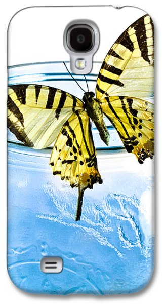 Butterfly On A Blue Jar Galaxy S4 Case