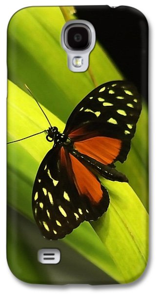 Butterfly On Leaves Galaxy S4 Case
