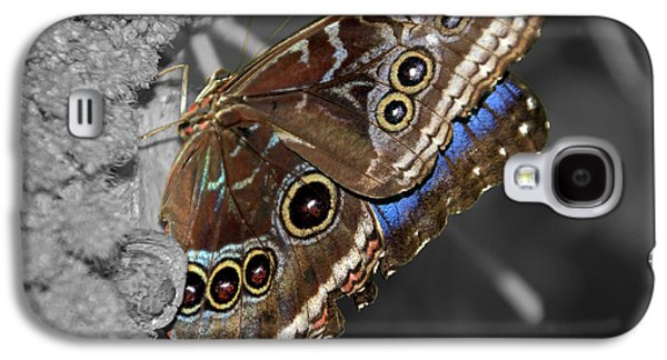 Butterfly Spot Color 1 Galaxy S4 Case