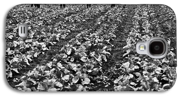 Galaxy S4 Case featuring the photograph Cabbage Farming by Ricky L Jones