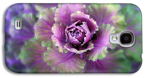 Cabbage Flower Galaxy S4 Case by Jessica Jenney