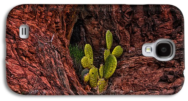 Cactus Dwelling Galaxy S4 Case by Mark Myhaver