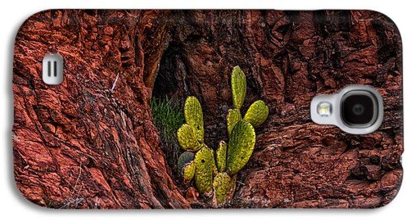 Cactus Dwelling Galaxy S4 Case