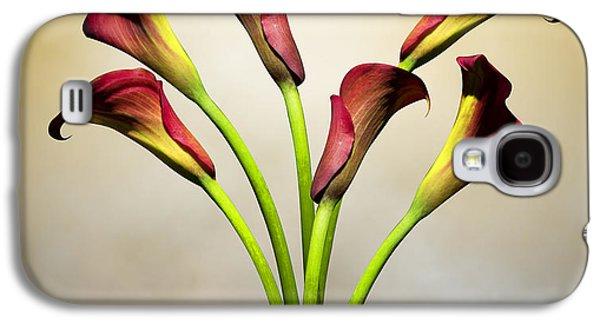 Lily Galaxy S4 Case - Cala Lily 5 by Mark Ashkenazi
