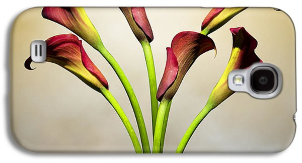 Lily Galaxy S4 Case - Cala Lily 5 by Mark Ashkenazi
