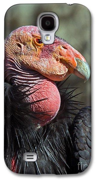 California Condor Galaxy S4 Case by Anthony Mercieca