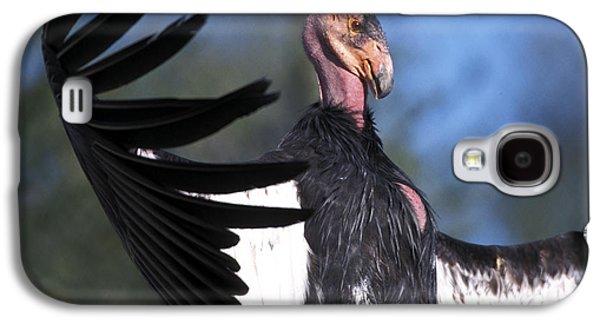 California Condor Galaxy S4 Case by Mark Newman