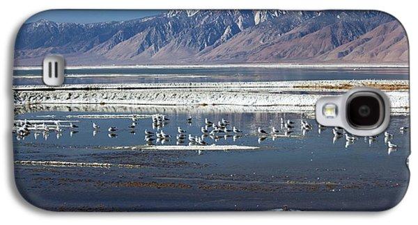 California Gulls On Owens Lake Galaxy S4 Case by Jim West