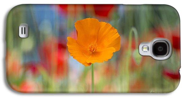 California Poppy Galaxy S4 Case
