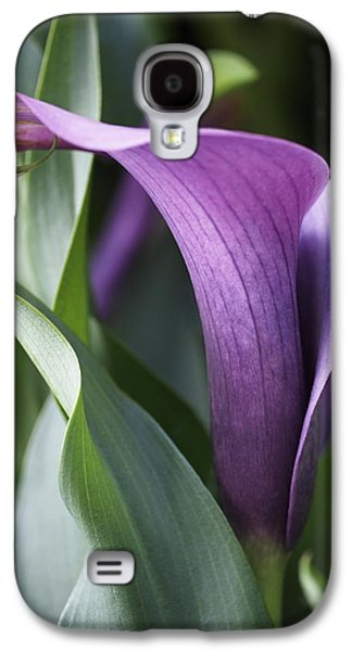 Lily Galaxy S4 Case - Calla Lily In Purple Ombre by Rona Black