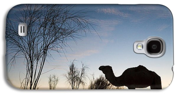 Desert Sunset Galaxy S4 Case - Camel Sunset by Delphimages Photo Creations
