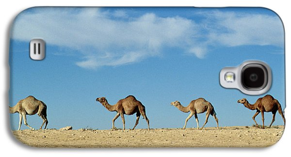 Desert Galaxy S4 Case - Camel Train by Anonymous