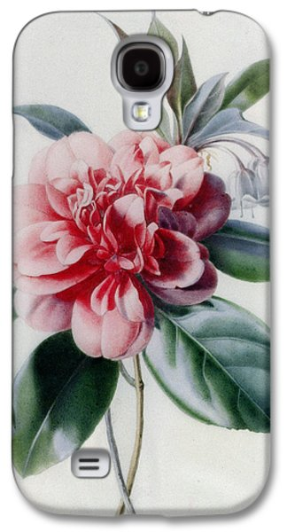Camellia Galaxy S4 Case by Marie-Anne