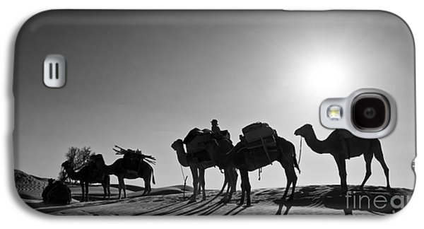Desert Sunset Galaxy S4 Case - Camels by Delphimages Photo Creations