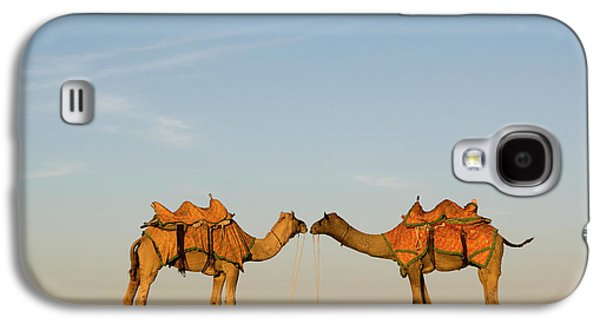Camels Stand Face To Face In The Thar Galaxy S4 Case