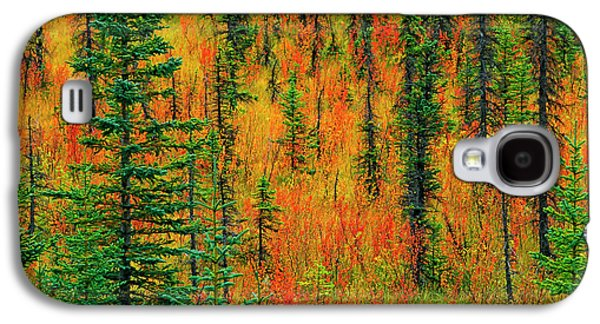 Canada, Alberta Autumn In A Meadow Galaxy S4 Case by Jaynes Gallery