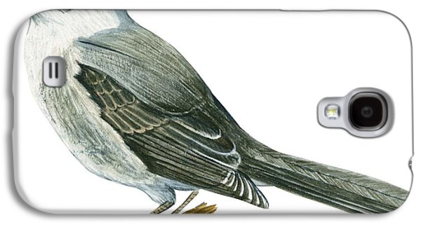 Canada Jay Galaxy S4 Case by Anonymous