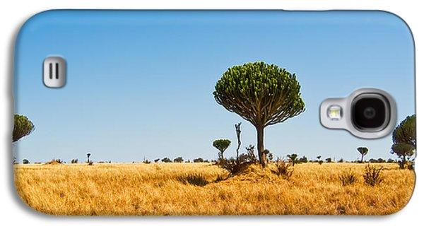 Candelabra Trees Galaxy S4 Case