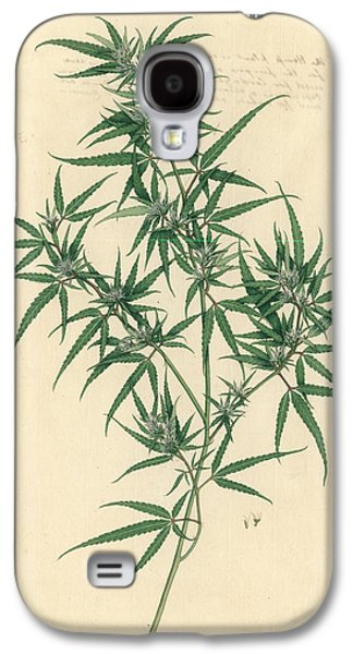 Cannabis Sativa Galaxy S4 Case