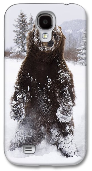 Captive Grizzly Stands On Hind Feet Galaxy S4 Case