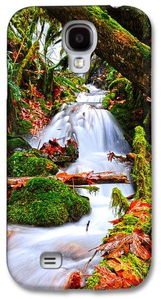 Cascade Creek Galaxy S4 Case by Randy Giesbrecht