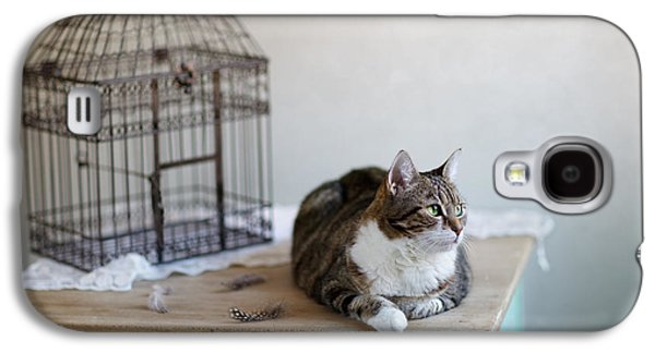 Cat And Bird Cage Galaxy S4 Case by Nailia Schwarz