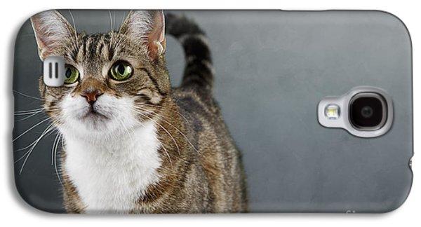 Cat Portrait Galaxy S4 Case