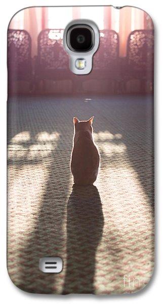 Cat Sitting Near Window Galaxy S4 Case by Matteo Colombo