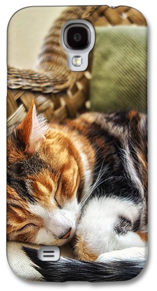 Catnap Galaxy S4 Case by Anthony Citro