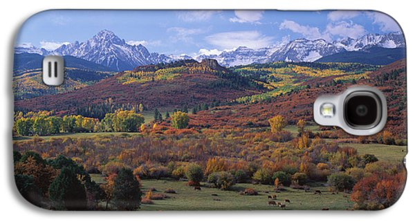 Cattle Grazing San Juan National Forest Galaxy S4 Case by Panoramic Images