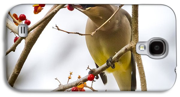 Galaxy S4 Case featuring the photograph Cedar Waxwing by Ricky L Jones