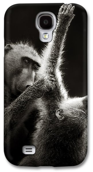Chacma Baboons Grooming Galaxy S4 Case by Johan Swanepoel
