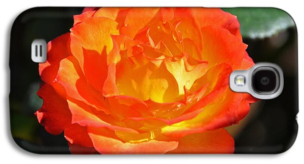 Charisma Rose Galaxy S4 Case