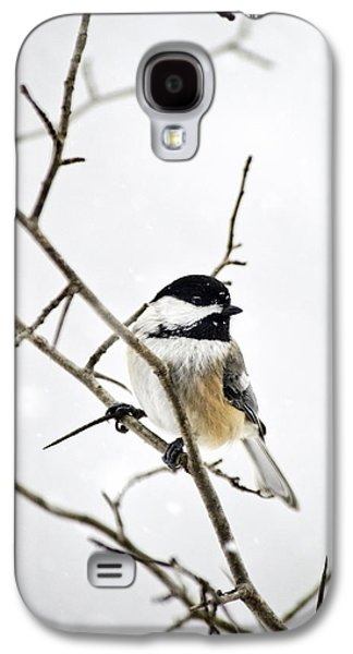 Charming Winter Chickadee Galaxy S4 Case