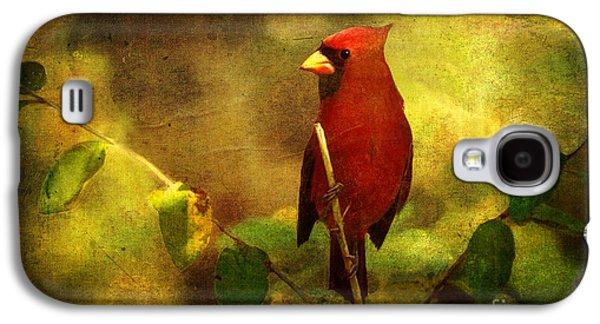 Cheery Red Cardinal  Galaxy S4 Case by Lianne Schneider