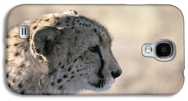 Cheetah  Acinonyx Jubatus Galaxy S4 Case by Liz Leyden