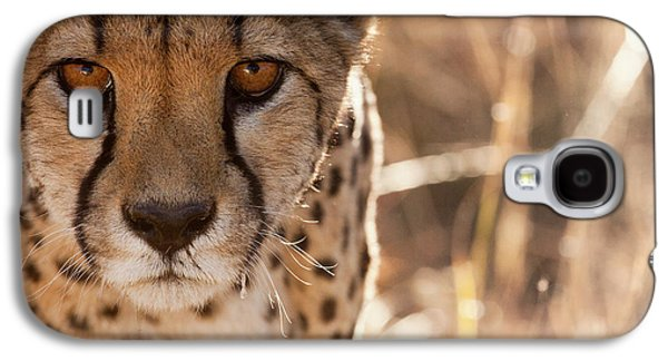 Cheetah Conservation Fund, Namibia Galaxy S4 Case by Janet Muir