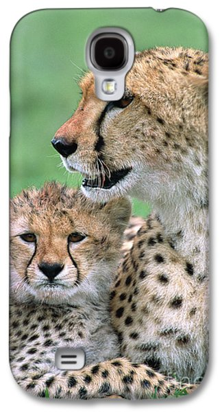 Cheetah Mother And Cub Galaxy S4 Case by Yva Momatiuk John Eastcott