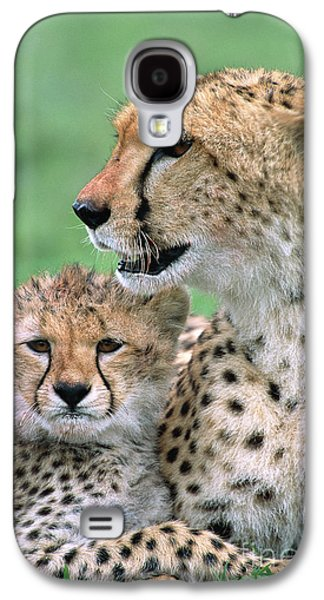 Cheetah Mother And Cub Galaxy S4 Case
